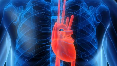 Endothelial-Dysfunction-Risk